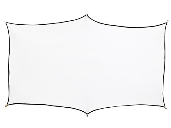 FP-055Z1-SF121 [55インチ ホワイト SF121]
